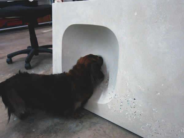Pixie Minidoxie inspects integral concrete sink vanity