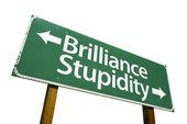 brilliance stupidity